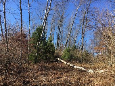 Oceana County Residential Lots & Land For Sale: 125 W Adams Road