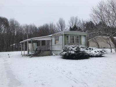 Coldwater Single Family Home For Sale: 391 N Snow Prairie Road