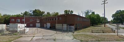 Kalamazoo Single Family Home For Sale: 808 Cobb Avenue