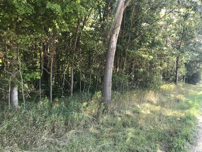 Ottawa County Residential Lots & Land For Sale: 9950 84th Avenue #H