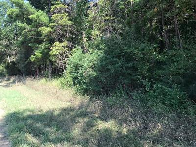 Ottawa County Residential Lots & Land For Sale: 9950 84th Avenue #I