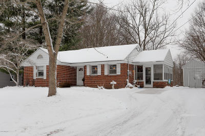 Allegan County Single Family Home For Sale: 204 Thomas Street