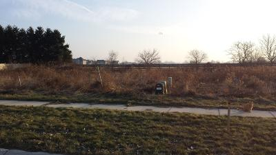 Stevensville Residential Lots & Land For Sale: 2412 Ulrich Street #Lot 80