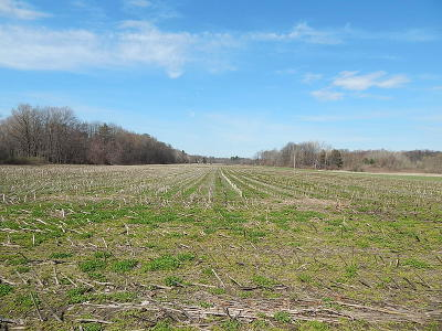 Muskegon County Residential Lots & Land For Sale: 49 Shaw Road