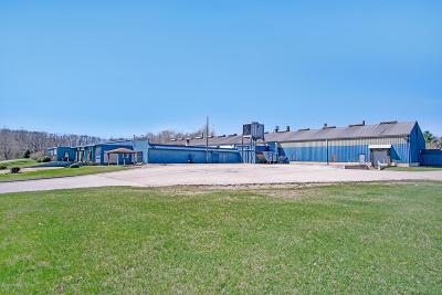 Berrien Springs MI Commercial For Sale: $1,500,000