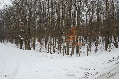 Canadian Lakes MI Residential Lots & Land For Sale: $5,000