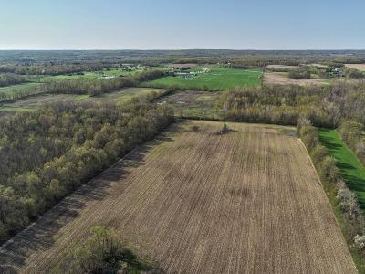 Berrien County, Cass County, Van Buren County Residential Lots & Land For Sale: 9978 Wilson Road