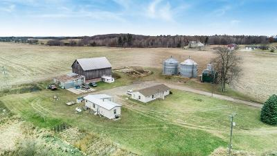 Single Family Home For Sale: 5699 S Maple Island Road