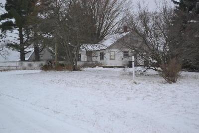 Newaygo County Single Family Home For Sale: 9925 N Pine Avenue