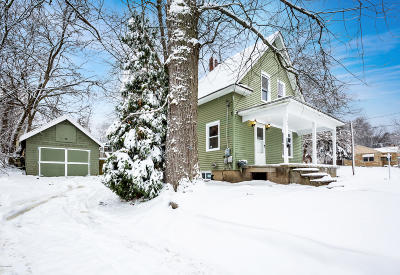 Kalamazoo Single Family Home For Sale: 1204 Palmer Avenue