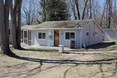 Mecosta MI Single Family Home For Sale: $39,900