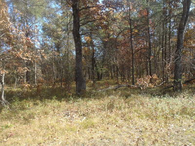 Antrim County, Benzie County, Charlevoix County, Clare County, Emmet County, Grand Traverse County, Kalkaska County, Lake County, Leelanau County, Manistee County, Mason County, Missaukee County, Osceola County, Roscommon County, Wexford County Residential Lots & Land For Sale: N Brooks Road