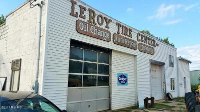 Leroy Commercial For Sale: 106 Mackinaw Trail