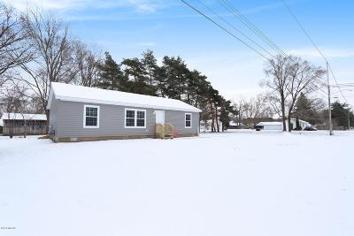 Cedar Springs MI Single Family Home For Sale: $174,900