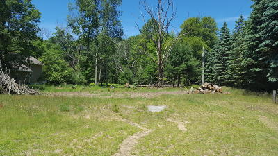 Antrim County, Benzie County, Charlevoix County, Clare County, Emmet County, Grand Traverse County, Kalkaska County, Lake County, Leelanau County, Manistee County, Mason County, Missaukee County, Osceola County, Roscommon County, Wexford County Residential Lots & Land For Sale: 5414 W Jagger Road