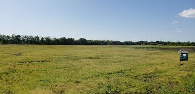 Belding Residential Lots & Land For Sale: Parcel A Benton Road