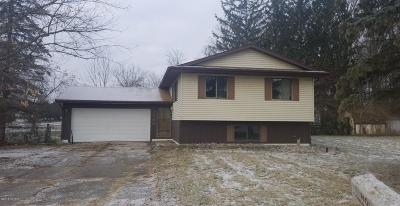 Ingham County Single Family Home For Sale: 2509 Renfrew Way