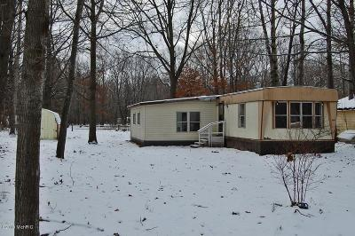 Mecosta County Single Family Home For Sale: 1017 Madrid Lane
