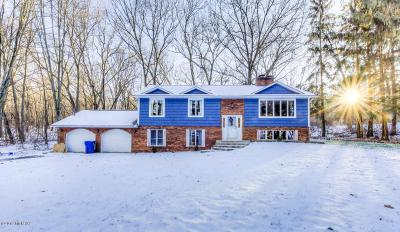 Mattawan MI Single Family Home For Sale: $390,000