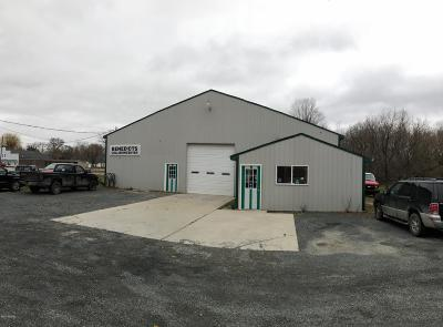 Scottville Commercial For Sale: 203 S Main Street