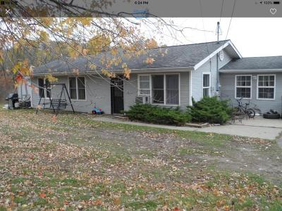 Berrien County Single Family Home For Sale: 4184 E Snow Road