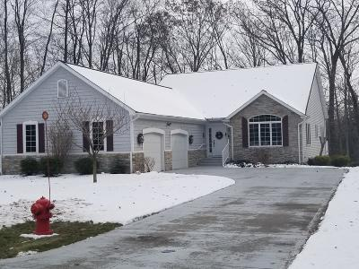 Benzie County, Charlevoix County, Clare County, Emmet County, Grand Traverse County, Kalkaska County, Lake County, Leelanau County, Manistee County, Mason County, Missaukee County, Osceola County, Roscommon County, Wexford County Single Family Home For Sale: 5300 W Riverside Lane