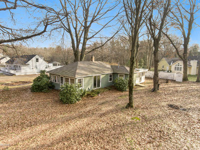Holland, West Olive, Zeeland Single Family Home For Sale: 16968 Ransom Street