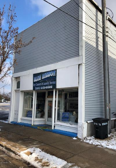 Ludington Commercial For Sale: 411 S James Street