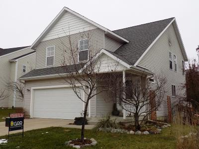 Lowell MI Single Family Home For Sale: $198,187