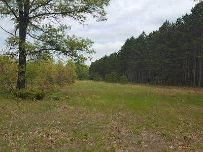 Benzie County, Charlevoix County, Clare County, Emmet County, Grand Traverse County, Kalkaska County, Lake County, Leelanau County, Manistee County, Mason County, Missaukee County, Osceola County, Roscommon County, Wexford County Residential Lots & Land For Sale: 4969 High Bridge Road