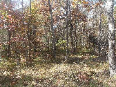 Benzie County, Charlevoix County, Clare County, Emmet County, Grand Traverse County, Kalkaska County, Lake County, Leelanau County, Manistee County, Mason County, Missaukee County, Osceola County, Roscommon County, Wexford County Residential Lots & Land For Sale: Merriville Road
