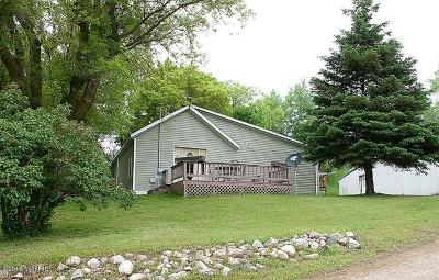 Isabella County Single Family Home For Sale: 6135 W County Line Road