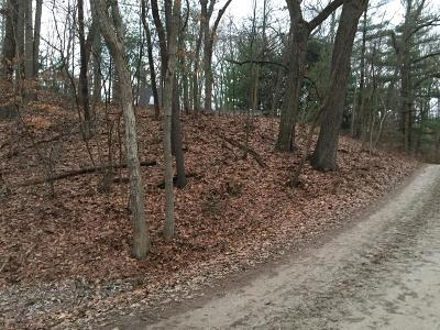 Bridgman Residential Lots & Land For Sale: Lot 51 Wildwood Drive