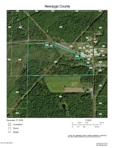White Cloud Residential Lots & Land For Sale: 4600 E Fillmore Road