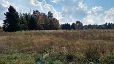 Hudsonville Residential Lots & Land For Sale: 6601 72nd Avenue #Parcel '