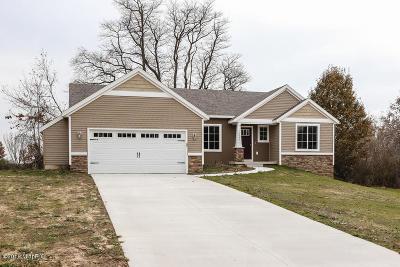 Ottawa County, Kent County Single Family Home For Sale: 7075 16 Mile Road NE