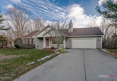Ottawa County, Kent County Single Family Home For Sale: 13232 Fox Ridge Court