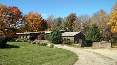 Lakeview Single Family Home For Sale: 9270 M-46 Road
