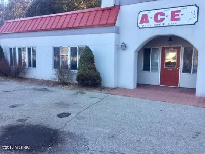 Howard City Commercial For Sale: 239 S Ensley Street