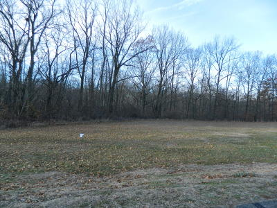 Residential Lots & Land For Sale: Lot 3 Spring Valley Lane