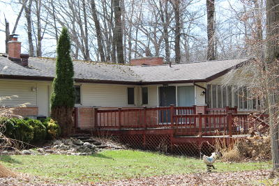 Gobles Single Family Home For Sale: 31426 Brandywine Road