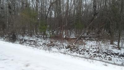 Ludington Residential Lots & Land For Sale: 42 Acres W First Street