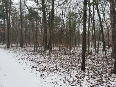 Newaygo Residential Lots & Land For Sale: Marshall Avenue
