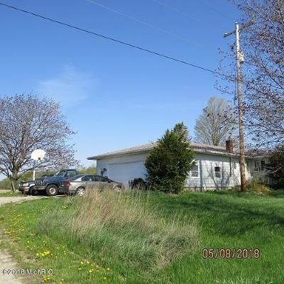 Carson City Single Family Home For Sale: 11364 E County Line Road