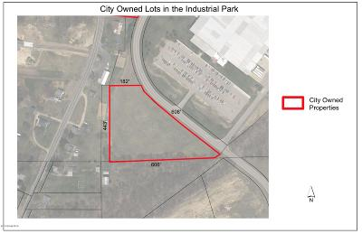 Allegan Residential Lots & Land For Sale: 845 Industrial Drive