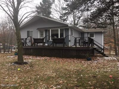 Mecosta Single Family Home For Sale: 11577 Channel Drive