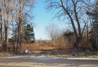 Covert Residential Lots & Land For Sale: 40893 78th Street