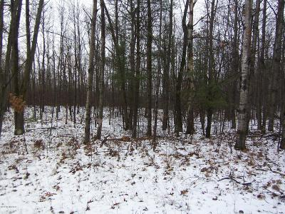 Reed City Residential Lots & Land For Sale: 10170 Alpine Drive