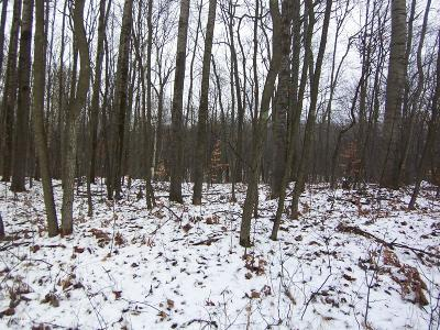Reed City Residential Lots & Land For Sale: 10184 Alpine Drive