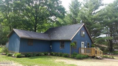Mecosta County Single Family Home For Sale: 22521 205th Ave. Avenue